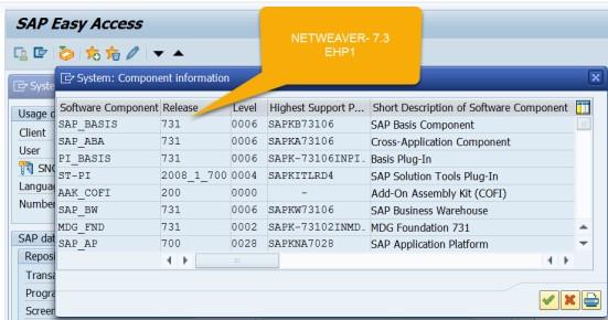 SAP Netweaver & SAP Business Suite – SAPCODES